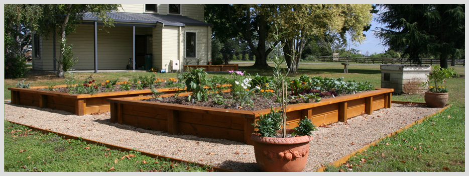 30 Brave Vegetable Garden Design Ideas Nz Izvipicom - garden design images nz